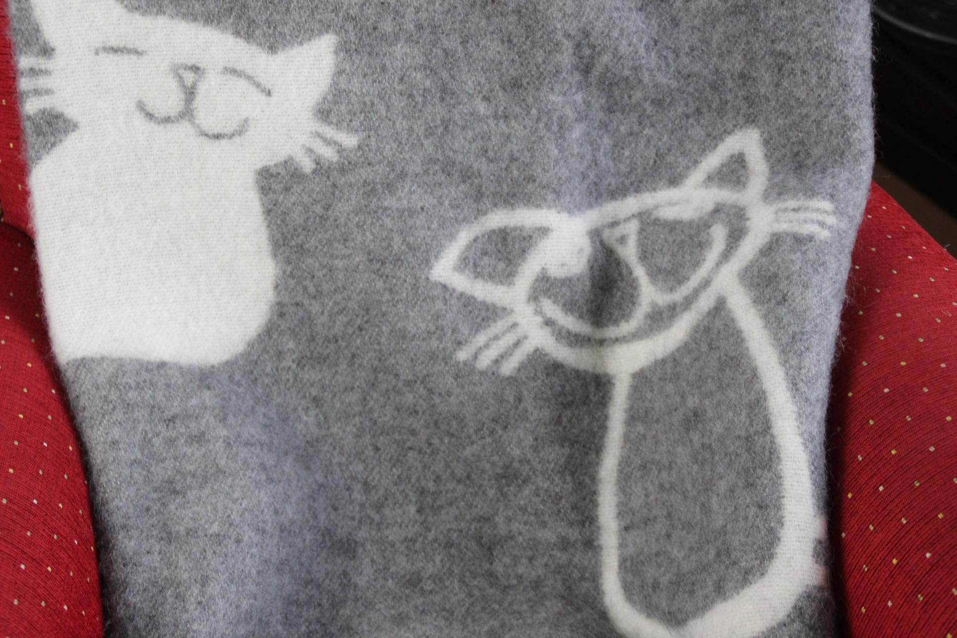 Katzendeckchen